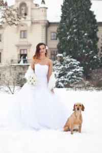Zimní pohádková svatba